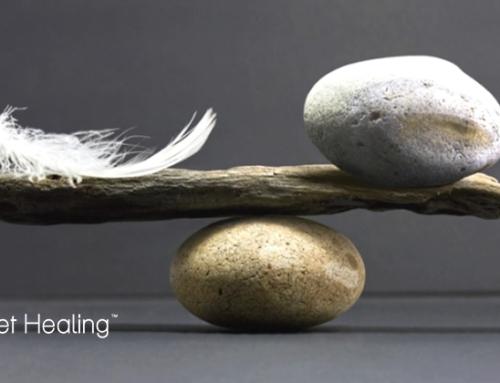 Conoscere le tue debolezze ti rende forte